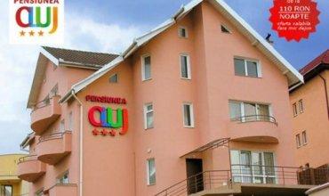 Pensiunea Cluj Cluj-Napoca